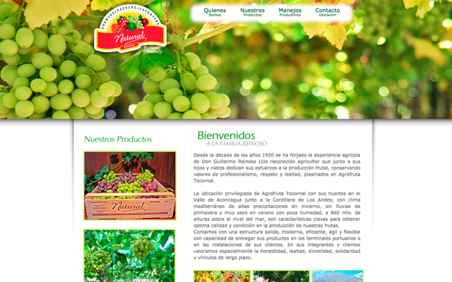 Diseño Web Natural Quality